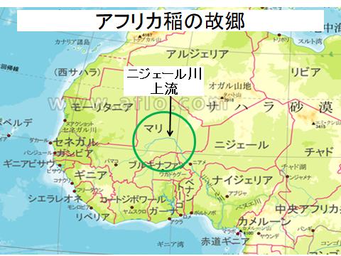 アフリカ稲の故郷(地図)