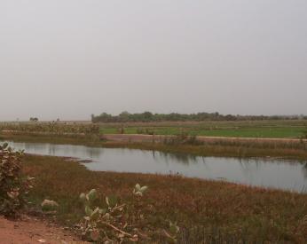 マリ国ニジェール川灌漑水路