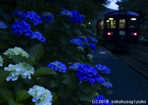DSC_2289a3_004.jpg