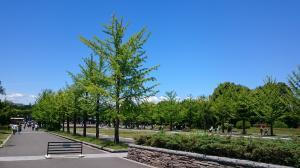 昭和記念公園②20180520