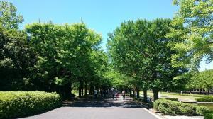 昭和記念公園③20180520
