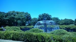 昭和記念公園④20180520