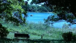 昭和記念公園⑨20180520