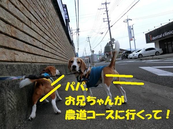 【 番外編 】 TAROママと映画鑑賞「万引き家族」!