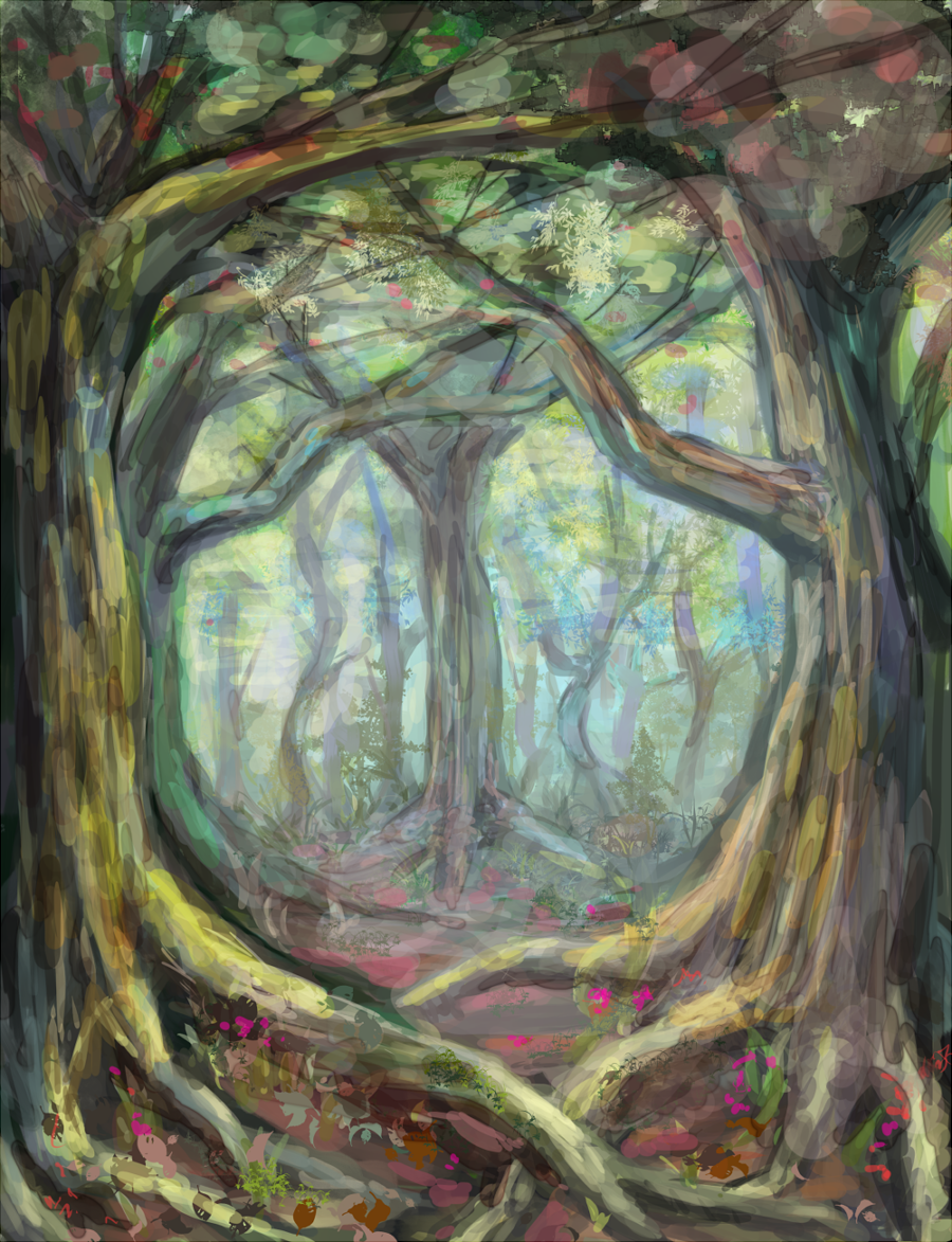 Boriの森