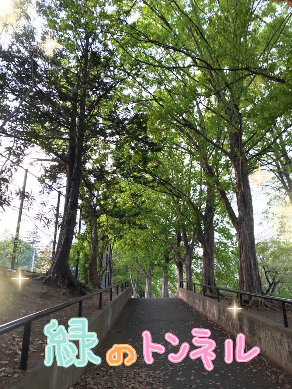 photo_2018-04-10_21-19-33.jpg