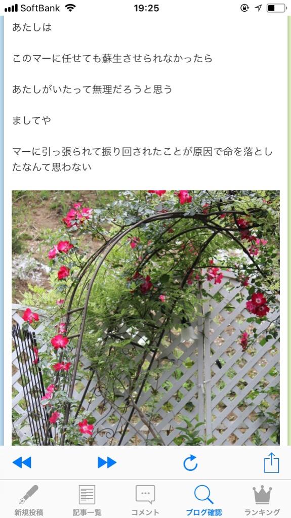 fc2blog_20180516223347a56.jpg