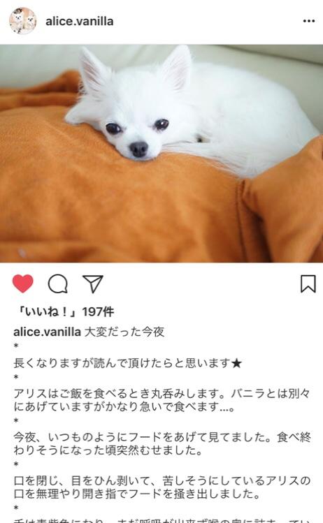 fc2blog_20180616005343638.jpg