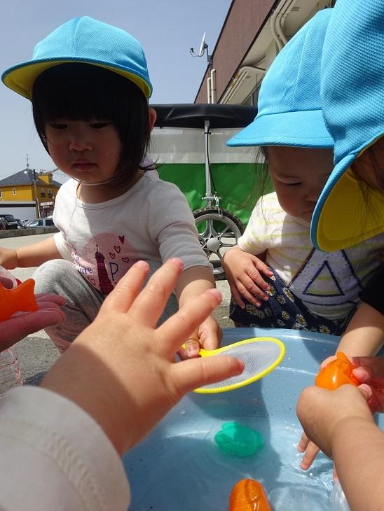 DSC02811blog.jpg