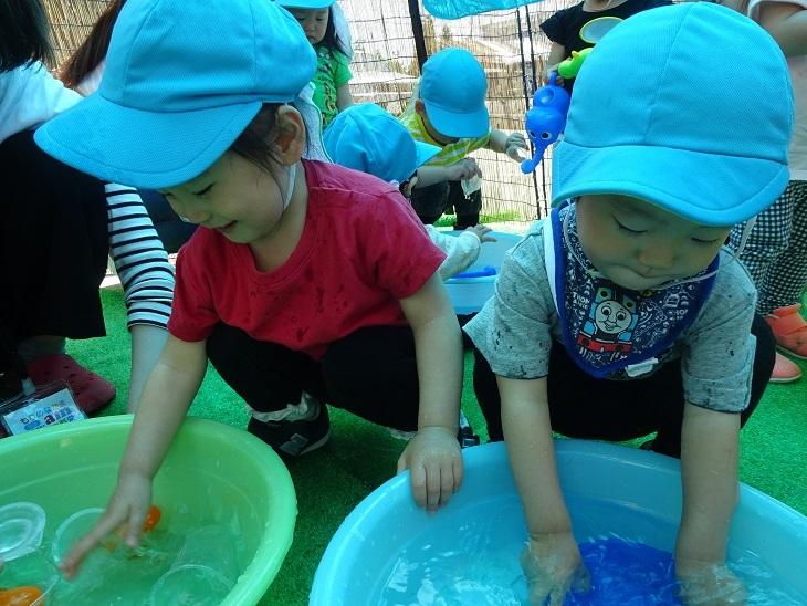 DSC02892blog.jpg