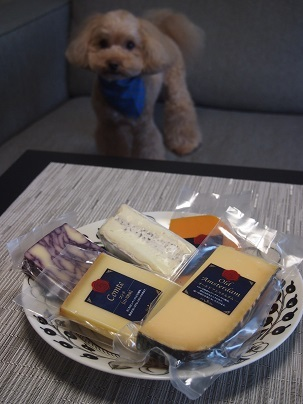 Cheese and Teo 2018-04