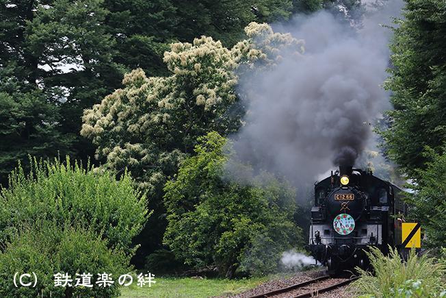20180609多田羅011DX2