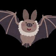 動物,コウモリ,蝙蝠