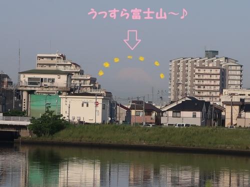 IMG_0325-2.jpg