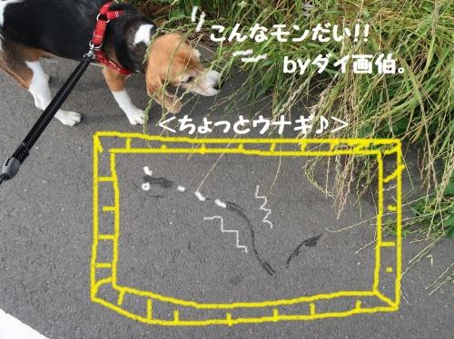 IMG_0602-2.jpg