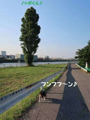 IMG_1852-2.jpg