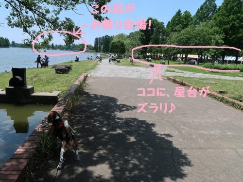 IMG_2152-2.jpg