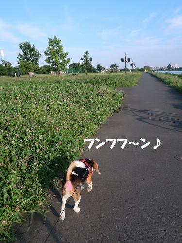 IMG_3000-2.jpg