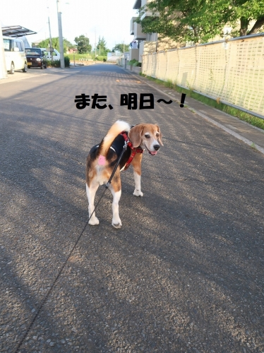 IMG_3900-2.jpg