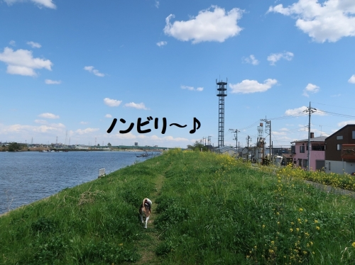 IMG_7923-2.jpg