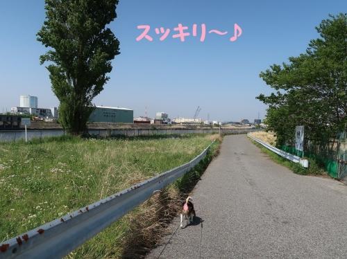IMG_8921-2.jpg