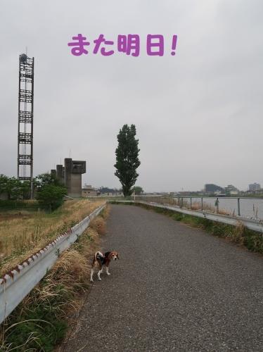 IMG_9109-2.jpg