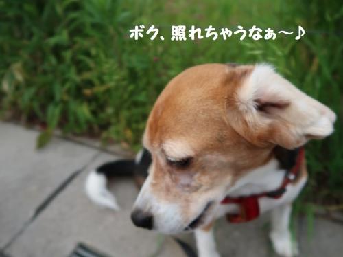 IMG_9679-2.jpg
