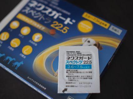 P6300863.jpg
