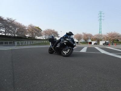 2018_04_01_15_09_24_dai.jpg
