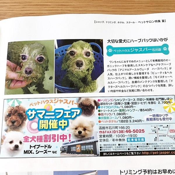 HAKORAKU デビュー!2