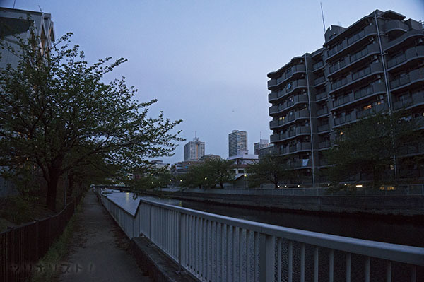 クローバー橋021