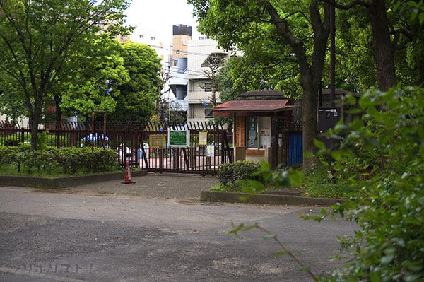墨田公園026