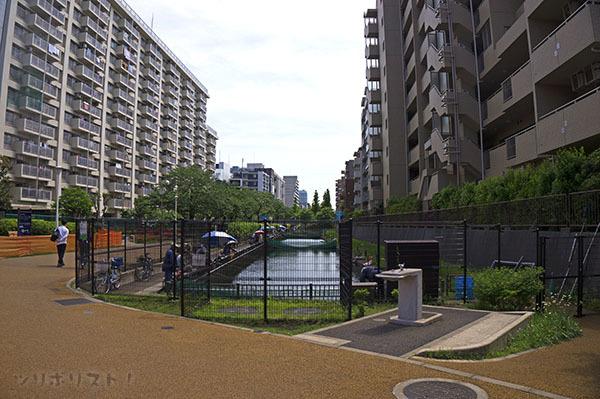 大横川親水公園018