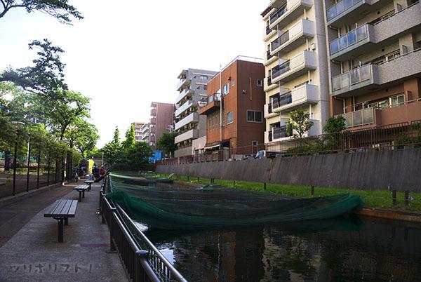 大横川親水公園023