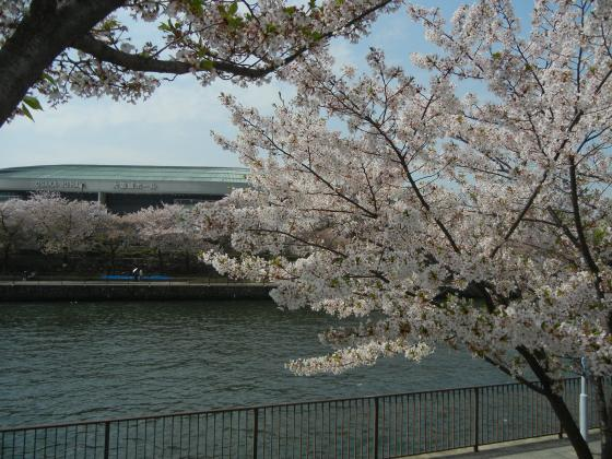 大阪城ホール1