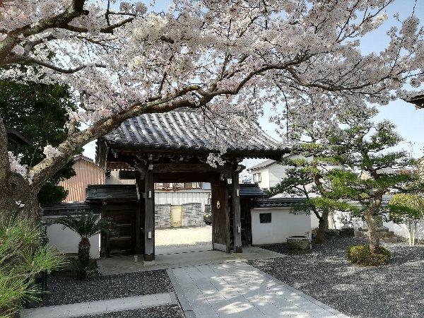 eikakuji-tsuruga-016.jpg