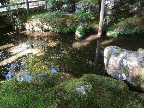 ginkakugi-kyoto-066.jpg