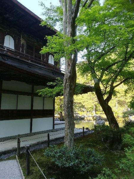 ginkakugi-kyoto-086.jpg