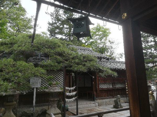 hachimajinjya-tsuruga-061.jpg
