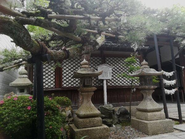 hachimajinjya-tsuruga-079.jpg