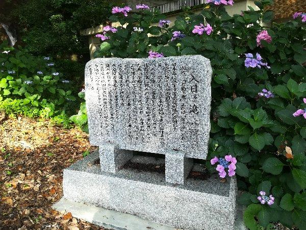 irihinotaki-echizen-001.jpg