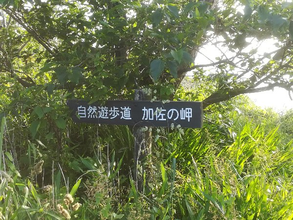 kasanomisaki-ishikawa-004.jpg