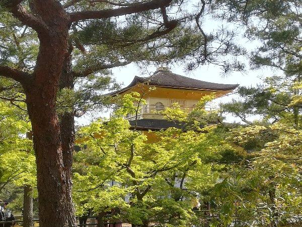 kinkakugi-kyoto-057.jpg