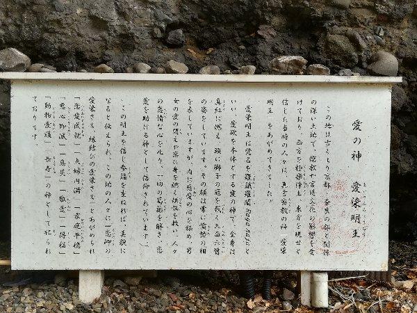 kochomon-echizen-003.jpg