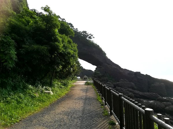 kochomon-echizen-019.jpg