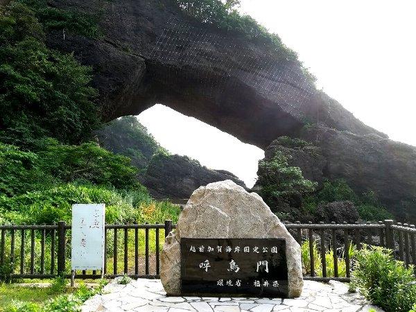kochomon-echizen-022.jpg