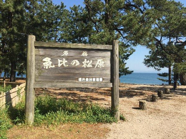 matsubara-tsuruga-004.jpg