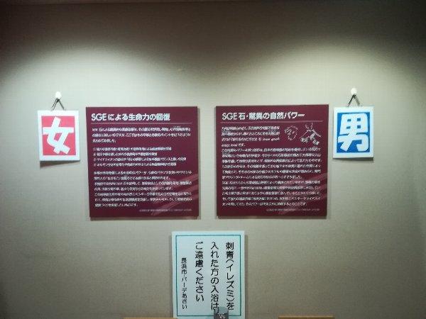 parkazai-nagahama-009.jpg