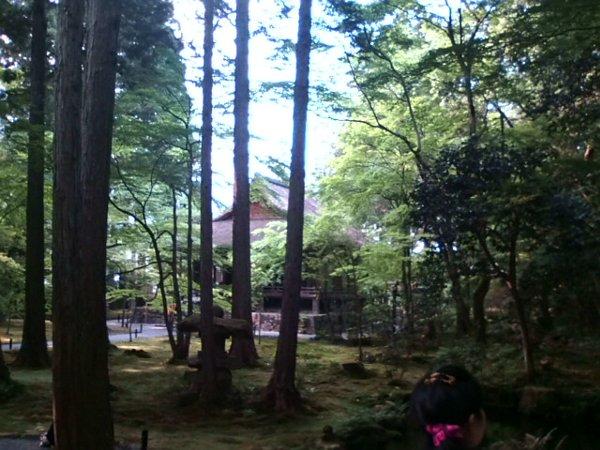 sanzenin-kyoto-008.jpg