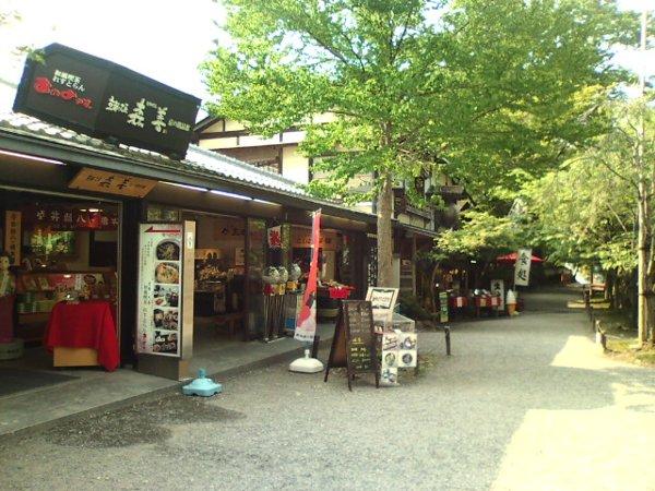 sanzenin-kyoto-016.jpg